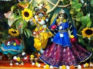 Beautiful Radha Govinda (Nirguna Prabhu's and Nilachala Didi's Thakurji) (1)